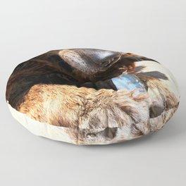 Dog Eating Fish Floor Pillow