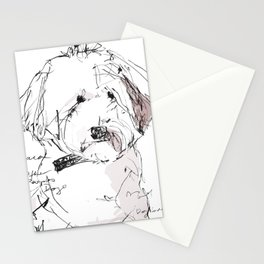 OPD Paca Stationery Cards