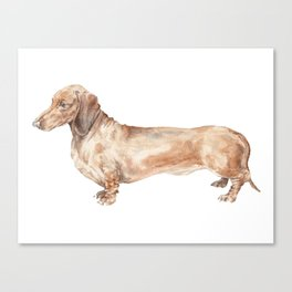 A long dog: Dachshund doxie puppy dog watercolor pet portrait Canvas Print