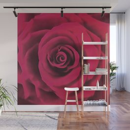 Big Red Rose Wall Mural