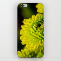lime iPhone & iPod Skins featuring Lime by Nicole Stamsek