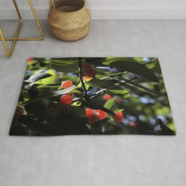 Jane's Garden - Sunkissed Red Berries Rug