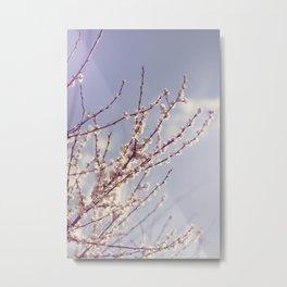 Spring is here again Metal Print