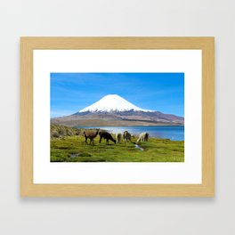 Chungara Lake, Chile Framed Art Print