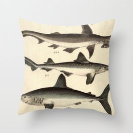 Vintage Illustration of Various Sharks Throw Pillow