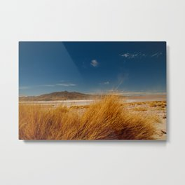AndesHigh Metal Print