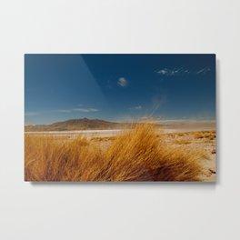 AndesHigh Metal Print