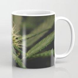 Plant Medicine Coffee Mug