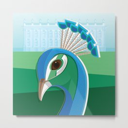 Stately Peacock Metal Print
