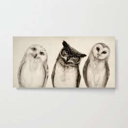 The Owl's 3 Metal Print