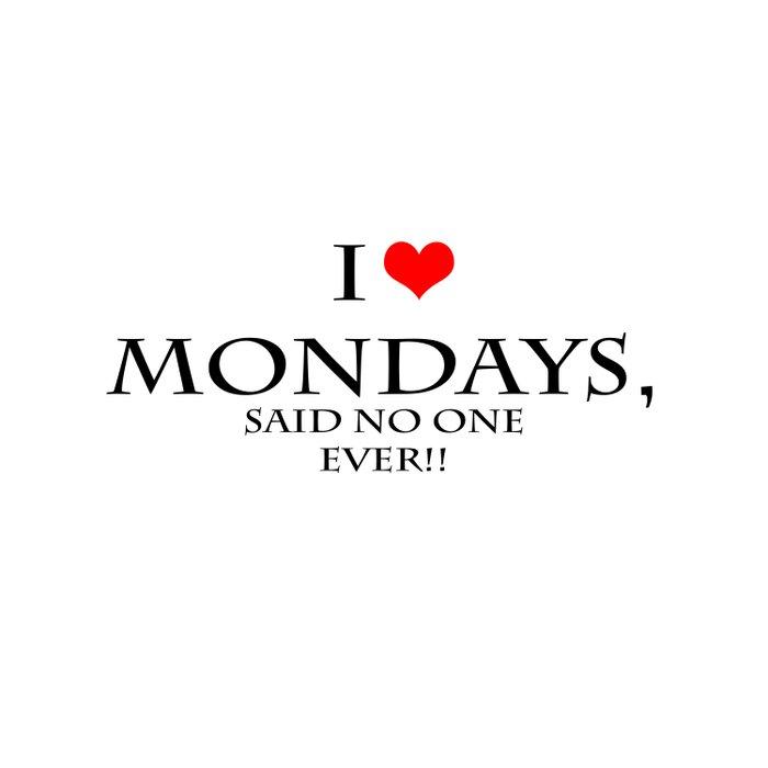 I love Mondays Duvet Cover