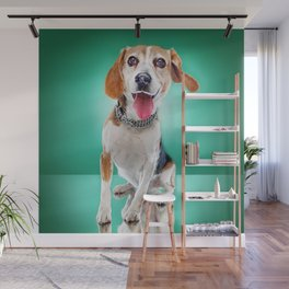 Super Pets Series 1 - Super Buckley 2 Wall Mural