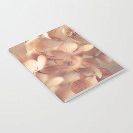 Soft Peach Notebook