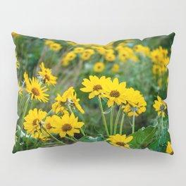 No. 5 Okanagan Sunflowers at Dawn Pillow Sham