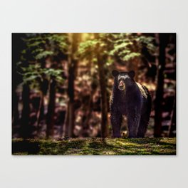 On Watch Canvas Print