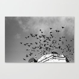 Fligt Canvas Print