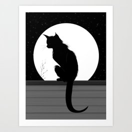 cat in night Art Print