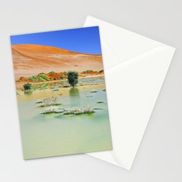 Water in the Namib desert after rain season, Namibia II Stationery Cards