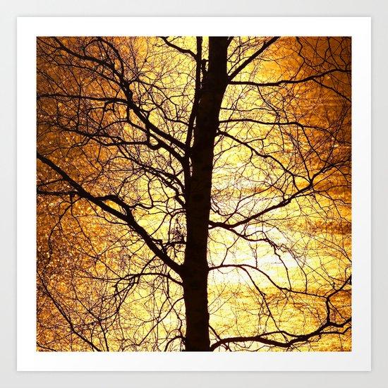Tree Silhouette At Sunset Art Print