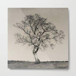 Tree No. 54 Metal Print