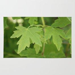 Amber Orientalis Leaves Rug