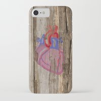 anatomical heart iPhone & iPod Cases featuring Anatomical Heart by Kyle Phillips