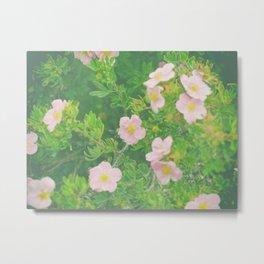 Flower Love 4 Metal Print