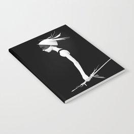 Cas Notebook