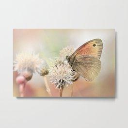 Butterfly  75 Metal Print