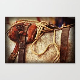 Ropes and Harness Canvas Print