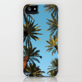 Palm trees, Vegas iPhone Case