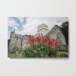 Flowers of Muckross Abbey in Killarney, Ireland Metal Print