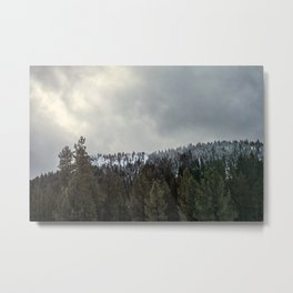 Northern California Winter Metal Print