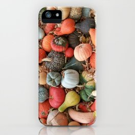 cornucopia (heirloom pumpkins and squashes) iPhone Case