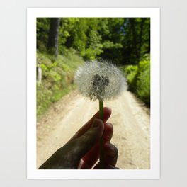 A Wish for the Road Art Print