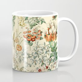 Flower Diagram // Fleurs V by Adolphe Millot XL 19th Century French Science Textbook Artwork Coffee Mug