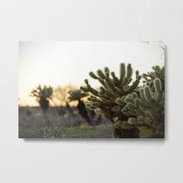 Sunset Adventure Metal Print
