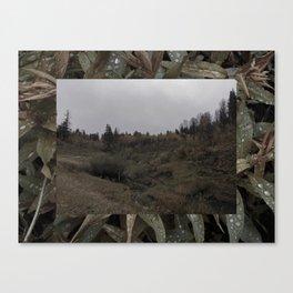 Hobble Creek Canvas Print