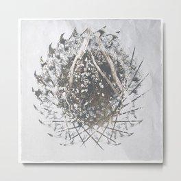 ferman 07 Metal Print