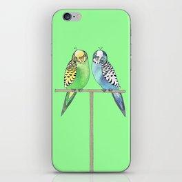 budgerigars iPhone Skin