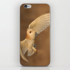 Barn Owl in Flight iPhone Skin