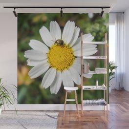 Magic Field Summer Grass - Chamomile Flower with Bug - Macro Wall Mural