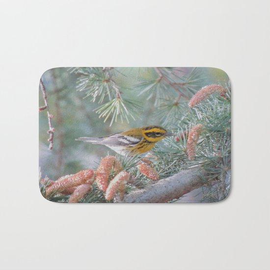 A Townsend's Warbler Spruces Up Bath Mat