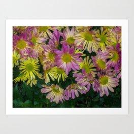 Flowers having a meeting Art Print