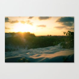 Those Days at the Beach Canvas Print