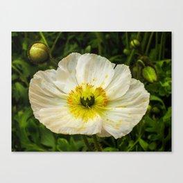 Medium Sized Flower Canvas Print