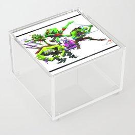 Turtles Acrylic Box