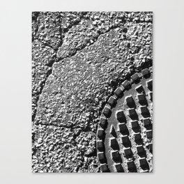 The Image Has Crack'd part 4 Canvas Print