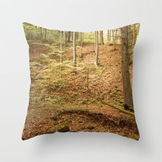 Life Is Uphill Throw Pillow