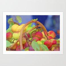apple in the basket Art Print